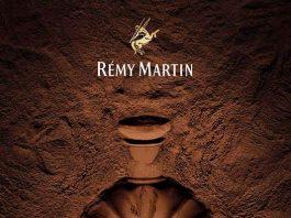 remy martin xo 干邑朱古力