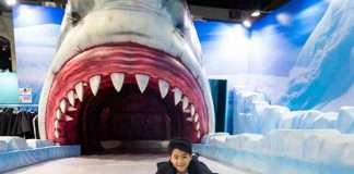 化身企鵝勇闖4米高鯊魚口
