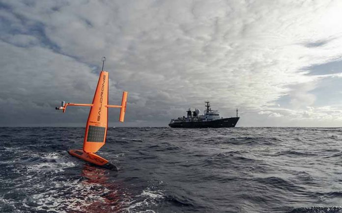 Saildrone tracking sharks in Ocean Pacific