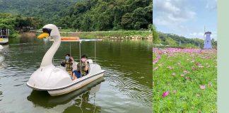 蝶豆花園有機農場 是情侶和一家大小假日的好去處
